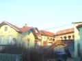 vocne_sadnice_029.jpg